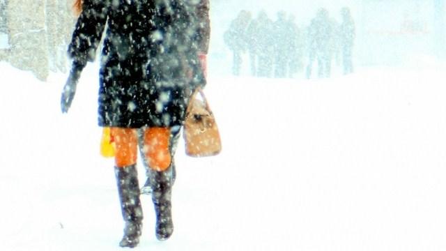 На Костромскую область обрушился мощный снегопад