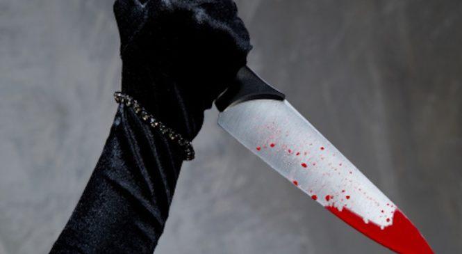 Пьяная гражданка Украины порезала жительницу Химок